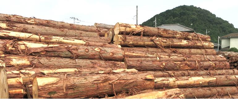 神奈川県産木材