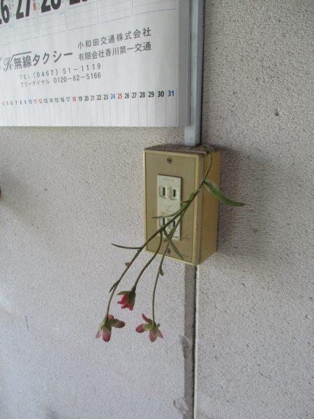 雨ニモマケズ風ニモマケズ・・・
