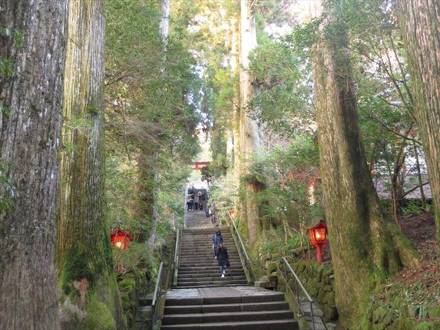 箱根神社へ